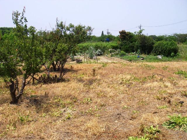 ガーデニング・庭作り・芝生・樹木・砂利販売なら庭園アドバイザーの当社へ│名古屋・知多・半田│ » 着手前1
